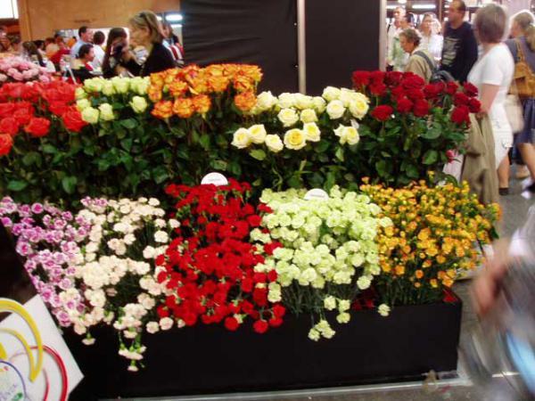 букеты роз и гвоздик