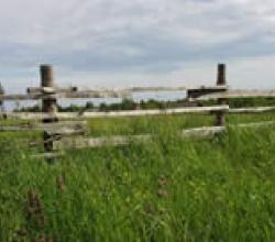 классический забор