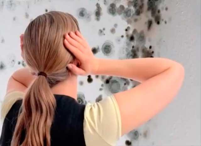 Фото пятен плесени на стене ванной