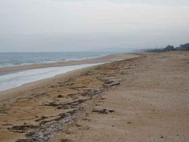 Гранулометрический состав песка