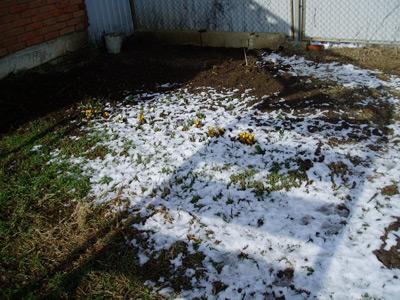 проведение земляных работ зимой