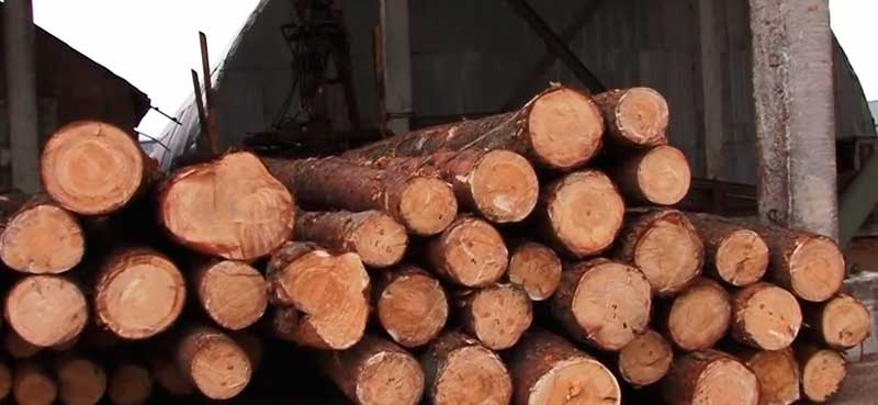 лес кругляк для производстваа стройматериалов