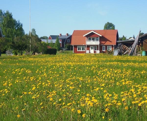 На фото – дом на землях сельскохозяйственного назначения