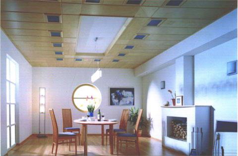 большая и светлая комната каминный зал