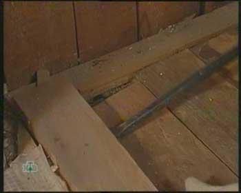 деревянные полы фото