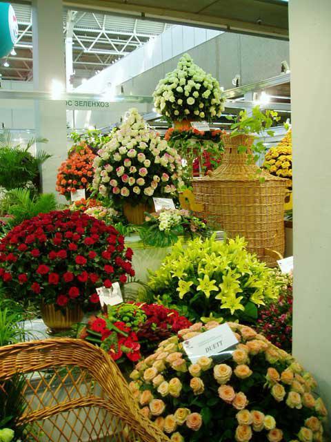 букет роз разных цветов