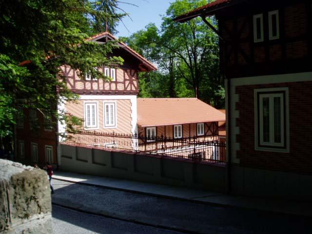розовый дом в лесу