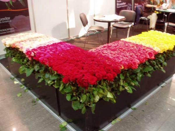 экспозиция садовых роз